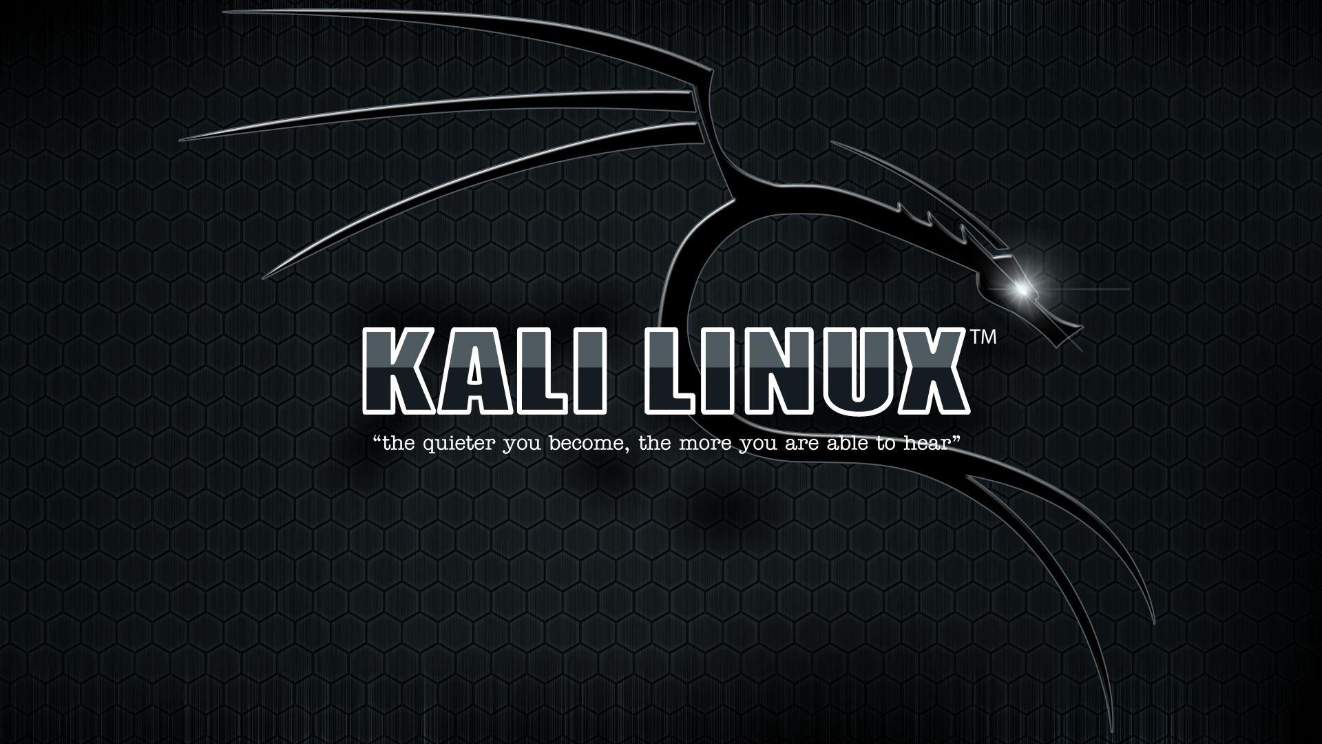 黑客武器库:Kali Linux